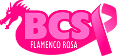 Flamenco Rosa DragonBoat